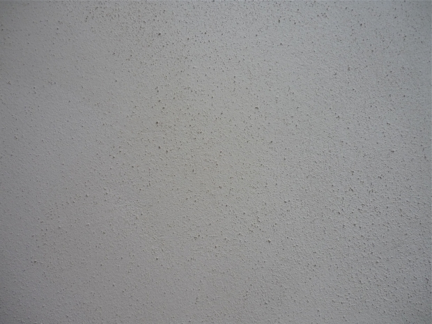 Textured Lime Plaster Top Coat